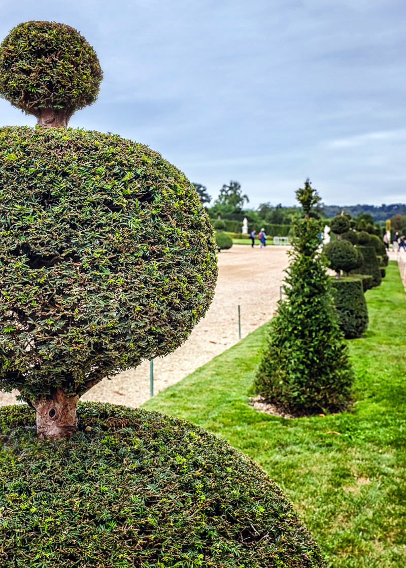 Paris Versailles garden topiary Paris France