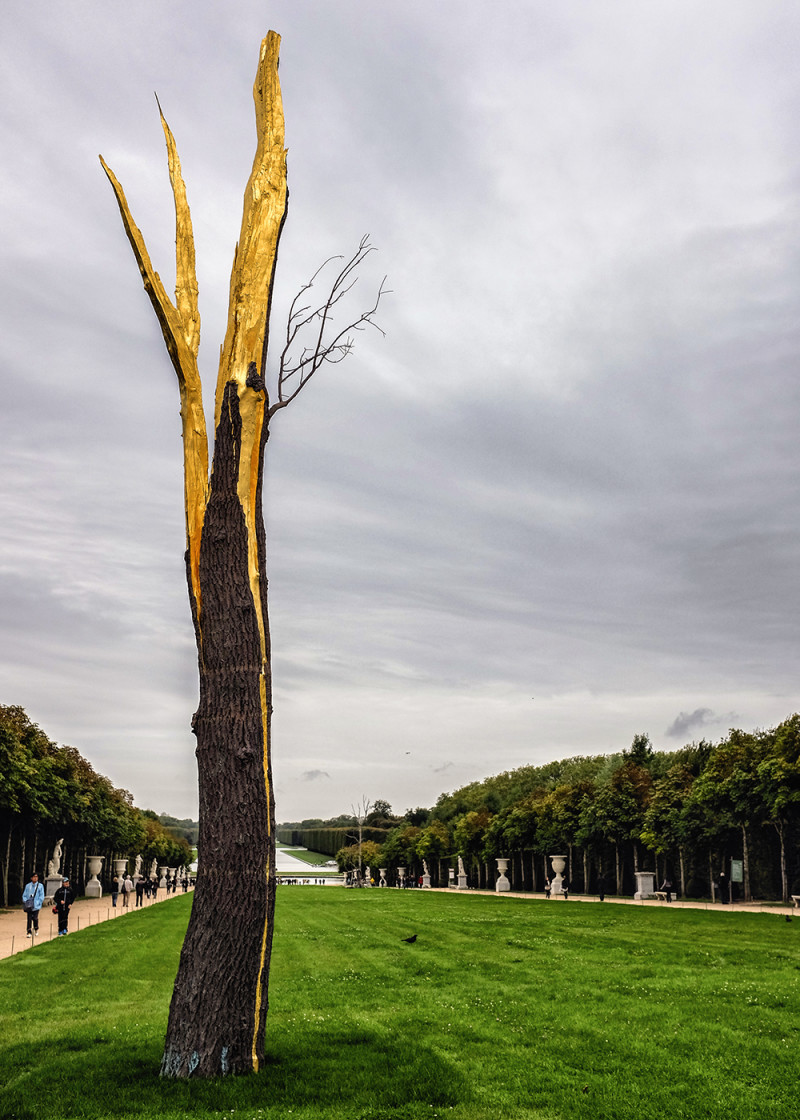 Paris Versailles tree Paris France