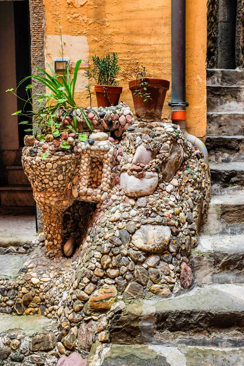 Riomaggiore rock planter Cinque Terre Italy