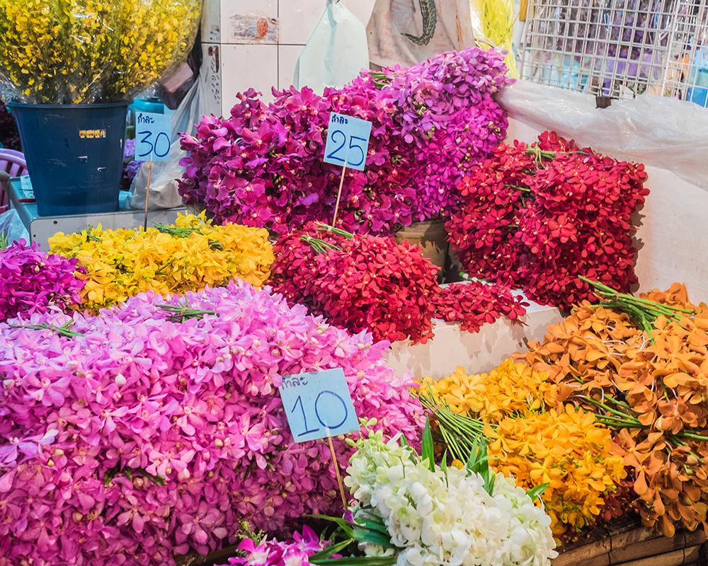 Pak Khlong Talat Flower Market orchids Bangkok Thailand